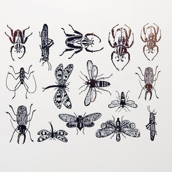 Botanical Insects Decal